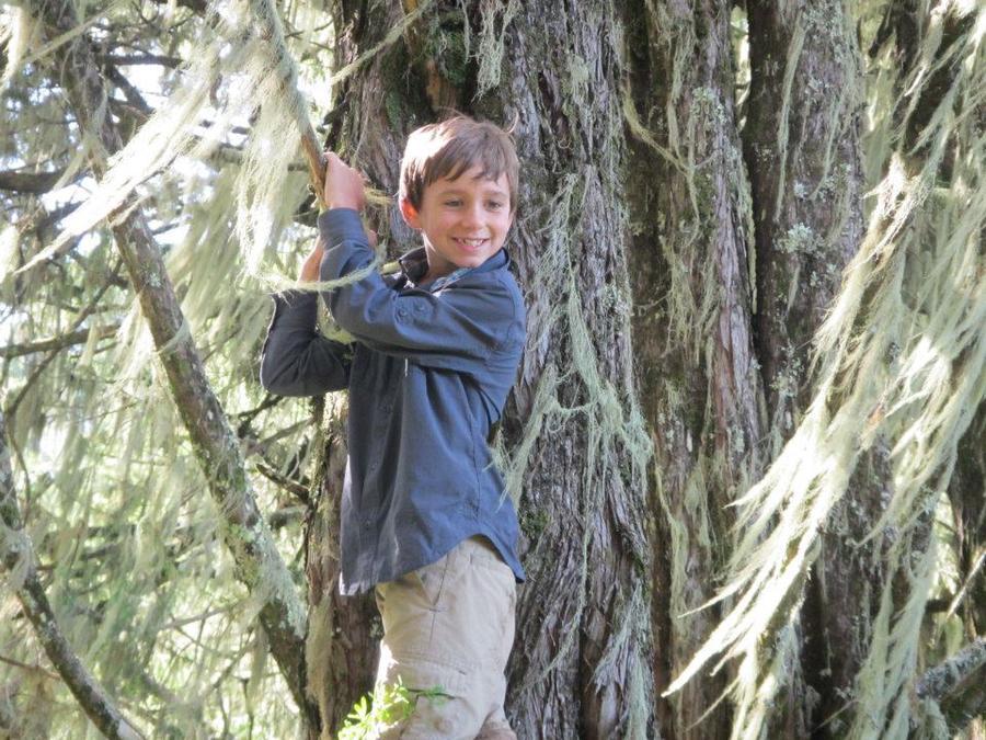 Девятилетний американец покорил высочайшую вершину в Андах