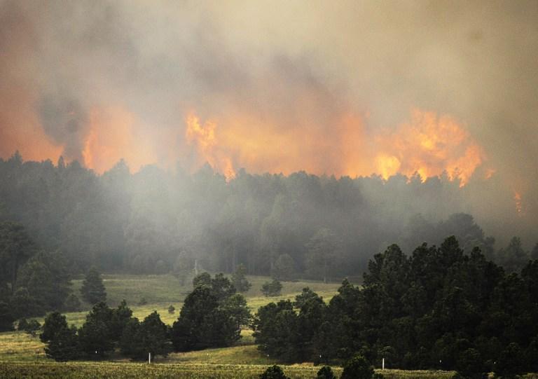 Отважный фермер отправился тушить пожар на тракторе, рискуя своей жизнью