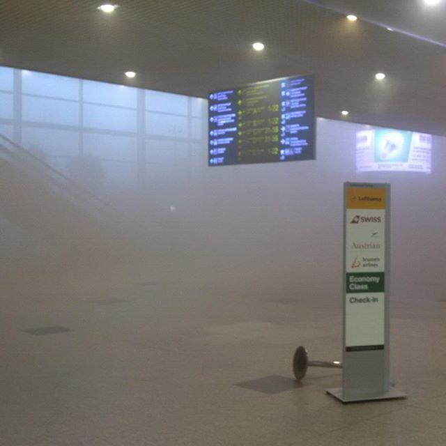 Пожар произошёл в московском аэропорту Домодедово, около 60 рейсов задержано