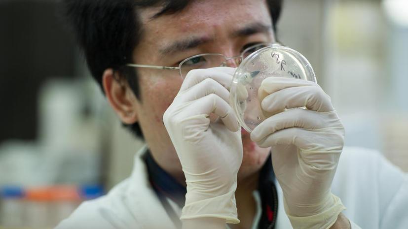 Японские учёные смогут повысить эффективность борьбы с раком