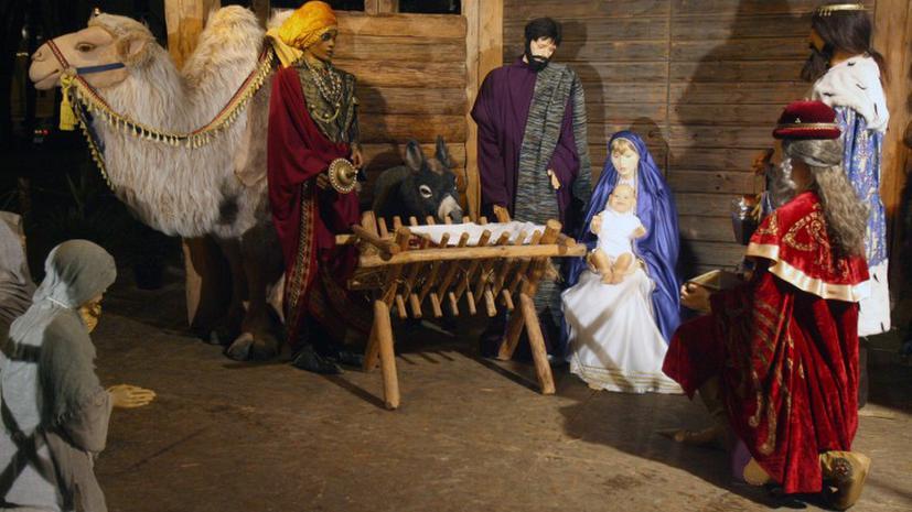 Папа Римский выступил против ослов в Рождественском вертепе