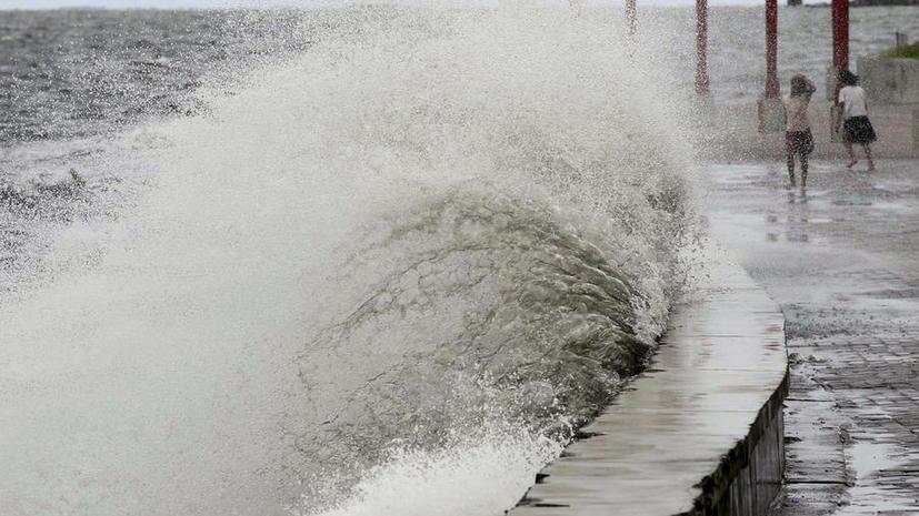 Приморье готовится к приходу мощного тайфуна «Гони»