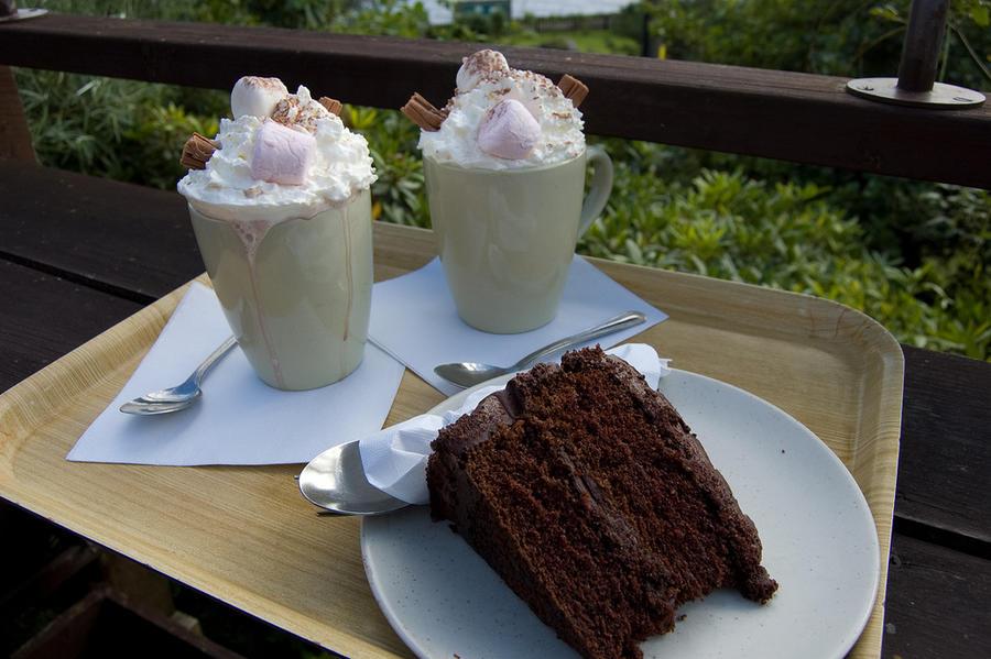 В Латвии предложили ввести «налог на жир»