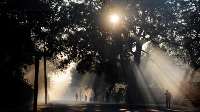 Пожилая американка прожила месяц, питаясь только солнечным светом