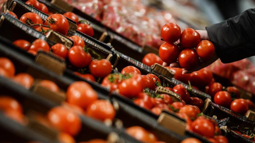 Александр Ткачёв: Россия перекроет чёрные схемы импорта продуктов