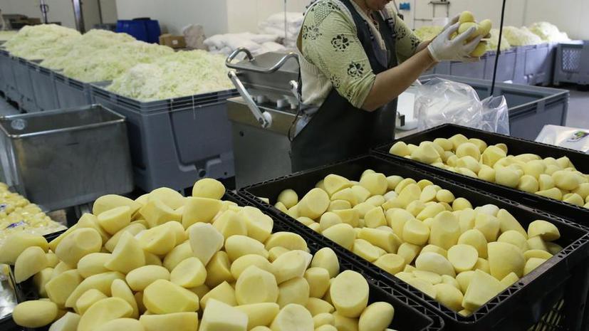Белорусский учитель создал картофельный аккумулятор
