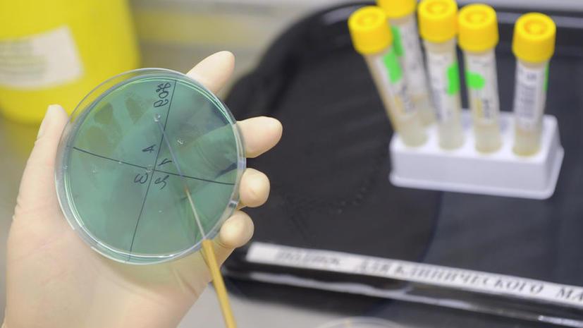 На Камчатке зарегистрировано уже 35 случаев свиного гриппа, один человек скончался