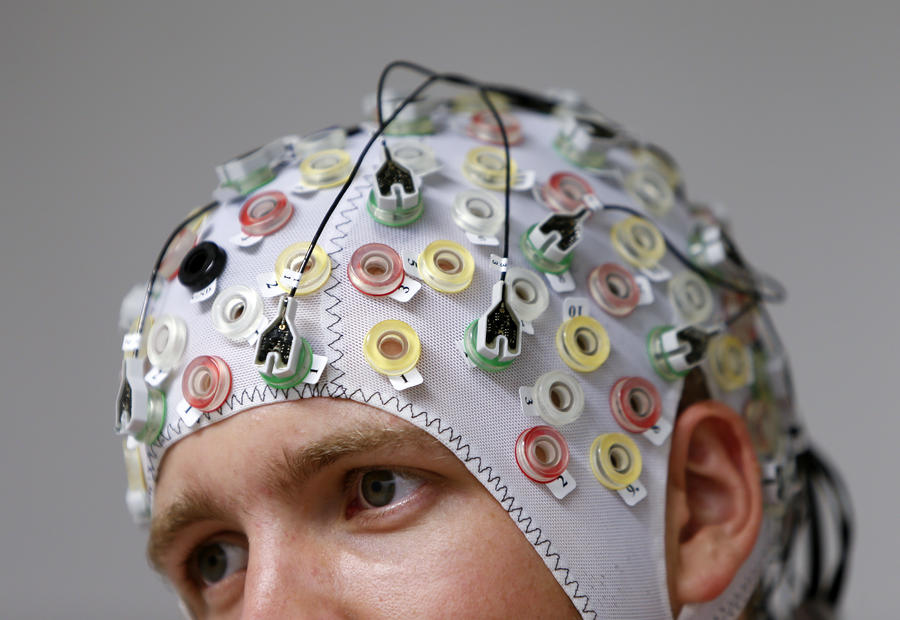 Учёные рассказали о принципах работы коллективного разума и причинах популярности некоторых гаджетов