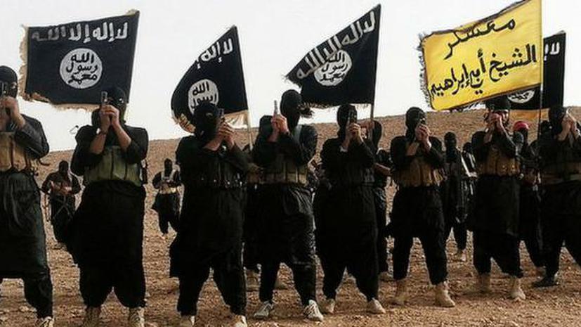 Кого бомбит Россия: структура и экономика «Исламского государства»