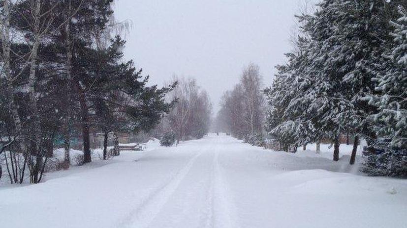 Второй день весны: на Москву обрушилась метель