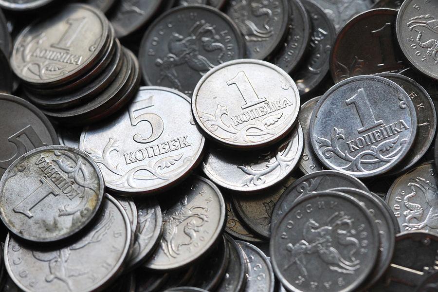 Житель Воронежа вернул долг в 5 тыс. рублей пятикопеечными монетами