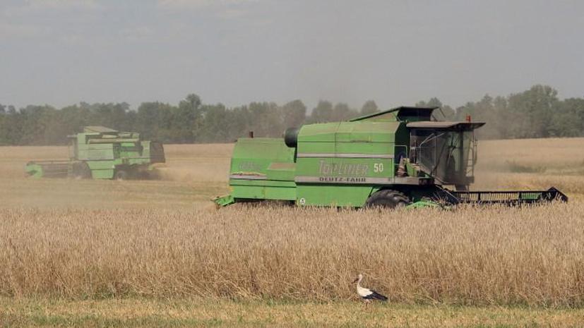 Китай сделает из Украины гигантскую ферму