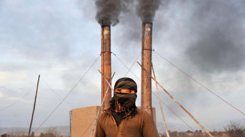 Подмосковных гастарбайтеров вербовали в афганские террористы
