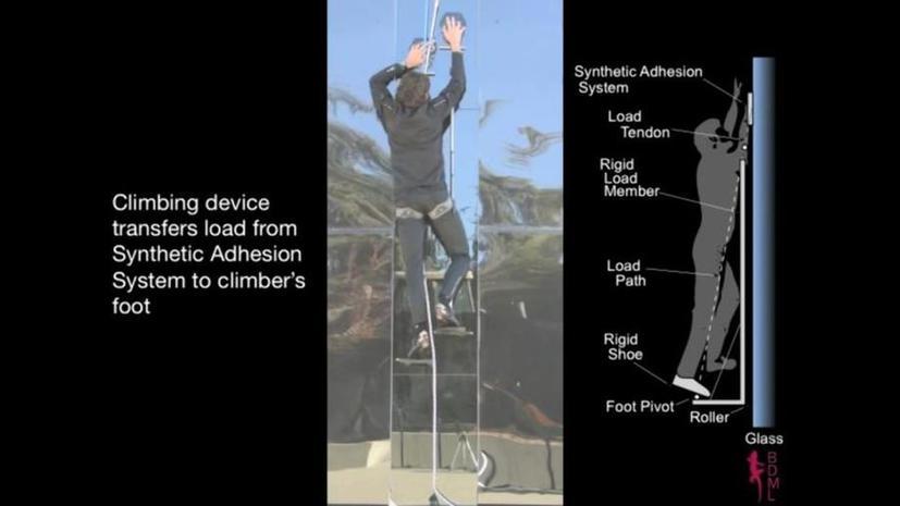Американские учёные воплотили в жизнь способности Человека-паука