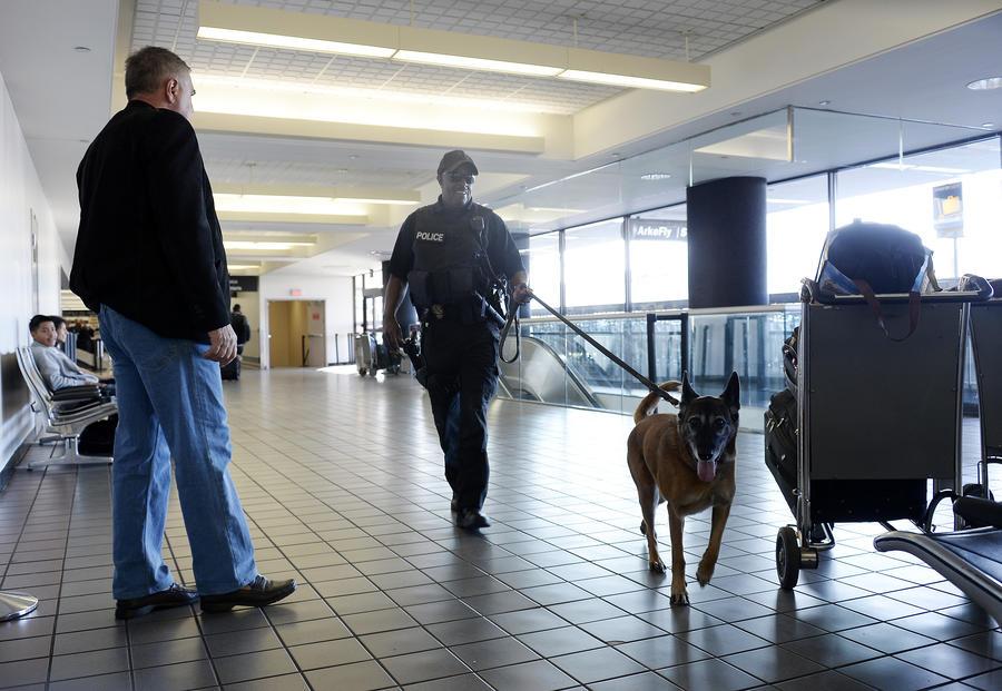 Американского студента задержали в аэропорту за карточки с арабскими словами