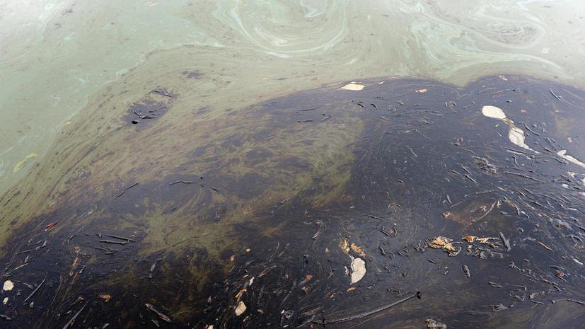 Новая угроза Мексиканскому заливу: туда чуть не попала нефть из трубопровода Shell