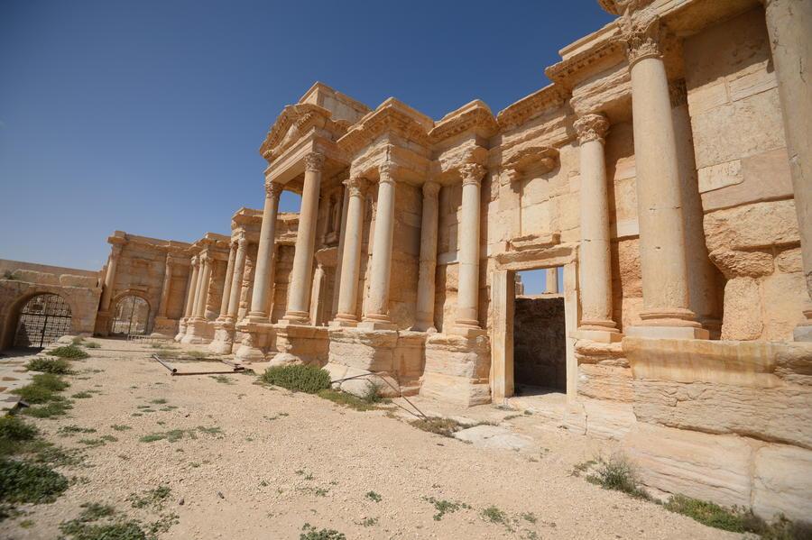 В ЮНЕСКО единогласно одобрили проект России по сохранению Пальмиры