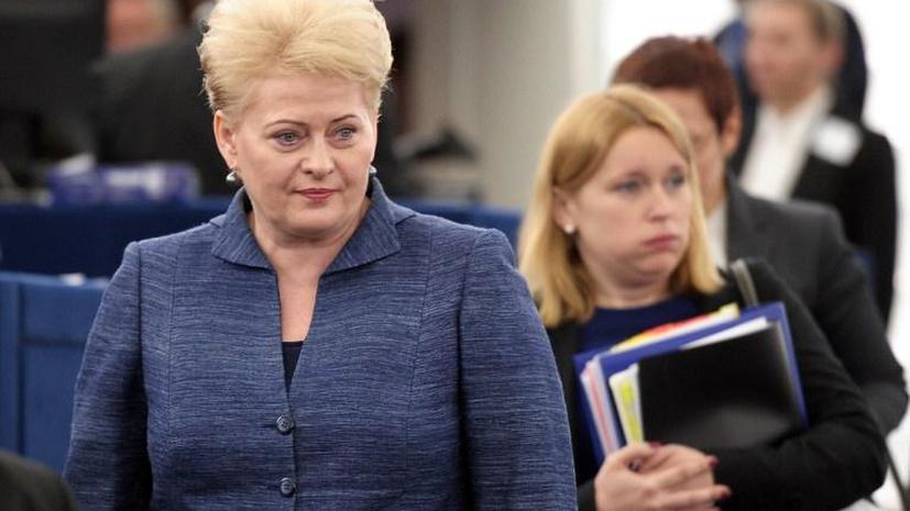 Президент Литвы: Россия пользуется слабостью Европы и усиливает влияние