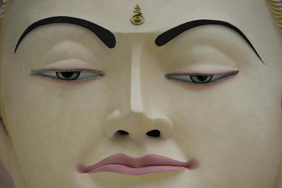 Спальные районы Чикаго защищаются от насилия скульптурами Будды