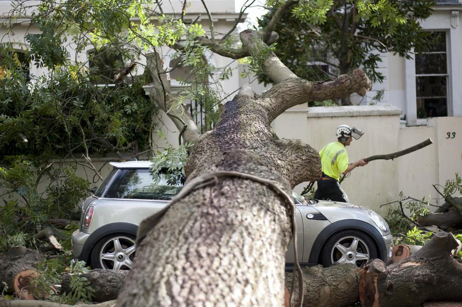 В Ленинградской области из-за урагана «Святой Иуда» объявлено штормовое предупреждение