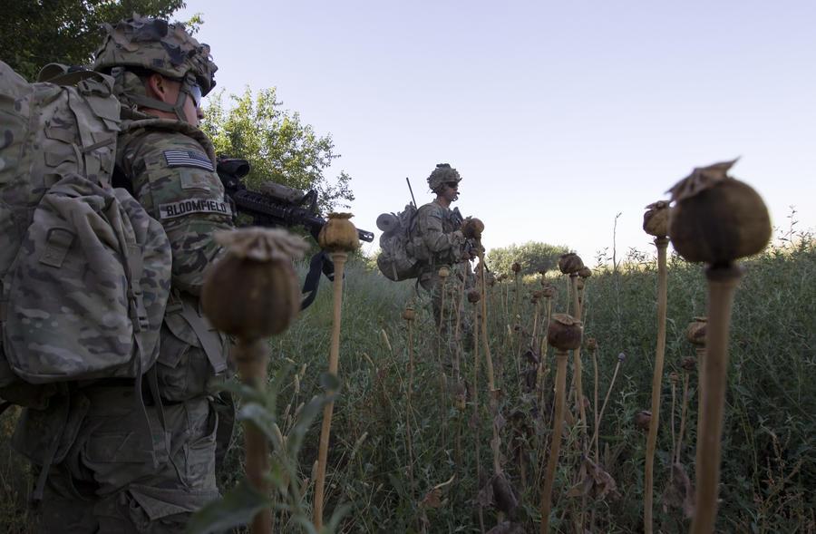 Конгресс США: Война с наркотиками в Афганистане потерпела фиаско