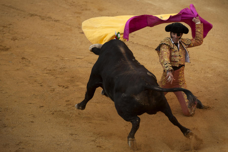 Испанцы требуют вернуть корриду