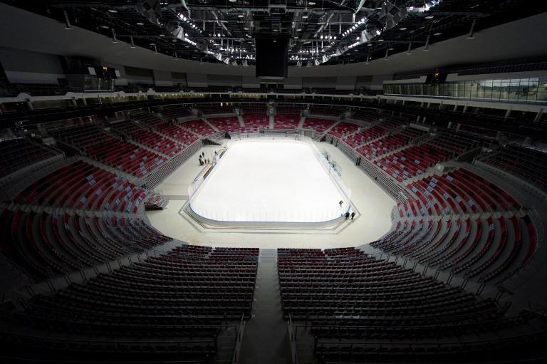 Хоккейные площадки в России планируют уменьшить по североамериканскому образцу