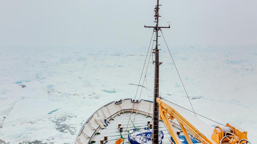 Российское судно «Академик Шокальский» оказалось в ледовом плену у берегов Антарктиды