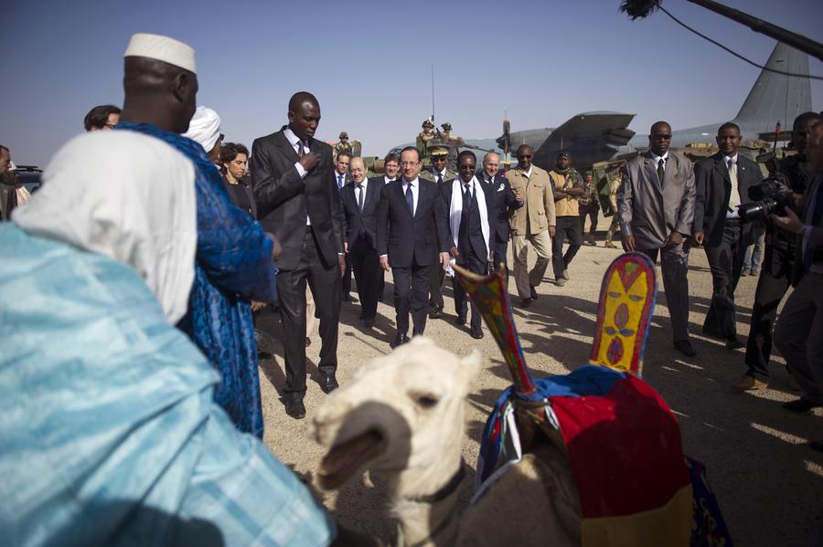 Малийский фермер съел верблюда, преподнесенного Олланду за освобождение Тимбукту