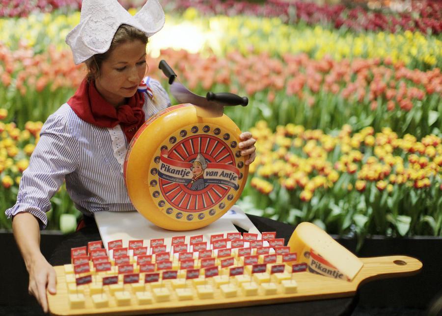 Немецкие СМИ: В воровстве сыра голландцы обвиняют русских