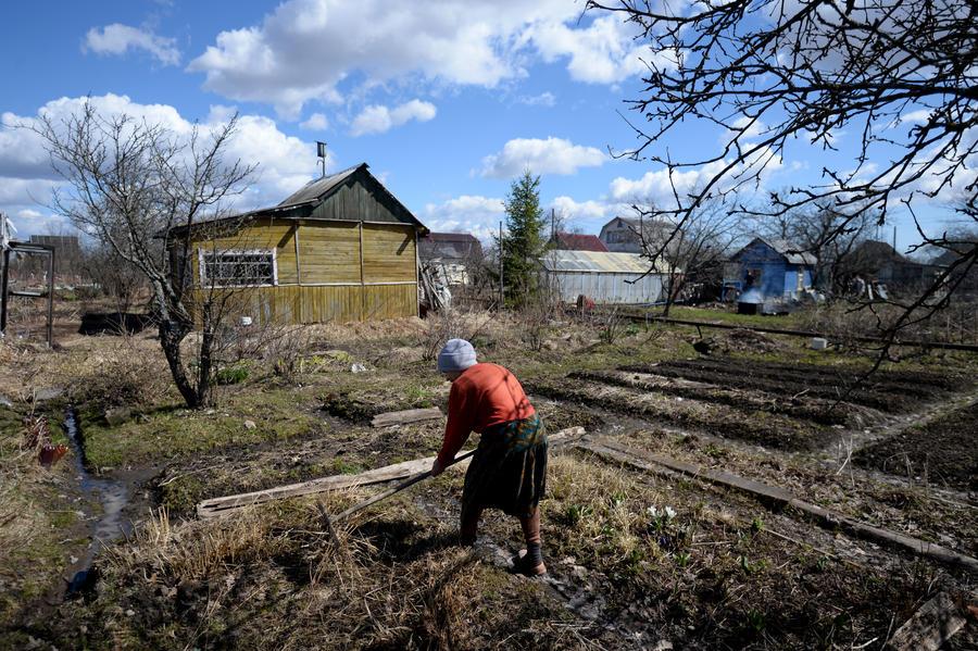 Россияне, продающие дачи стоимостью до 5 миллионов рублей, будут освобождены от НДФЛ
