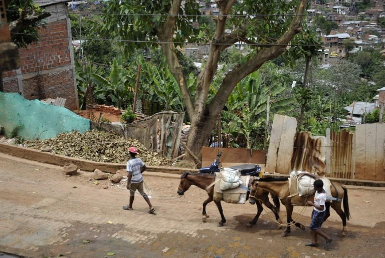 Власти Боготы решили пересадить горожан с лошадей на грузовики