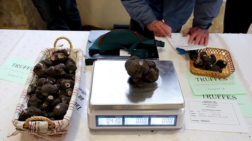 Глобальное потепление подняло цену на черные трюфели
