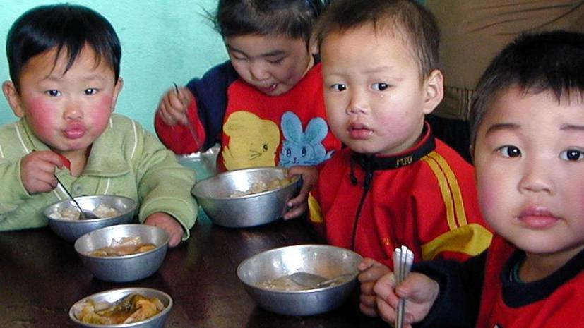 КНДР вынуждена вскрыть стратегические запасы, чтобы избежать голода