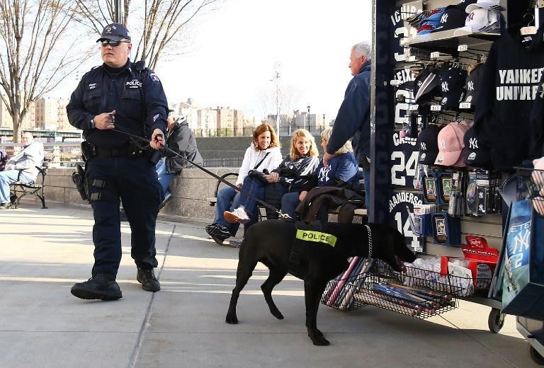 Мэр Нью-Йорка: городские полицейские чаще задерживают белых граждан, чем представителей меньшинств
