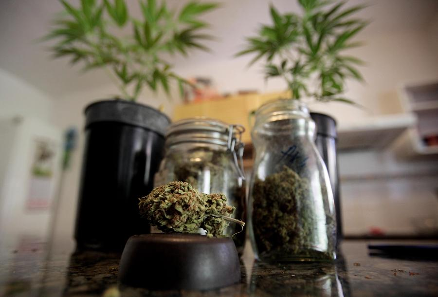 В Египте британского пенсионера приговорили к смертной казни за контрабанду трёх тонн марихуаны