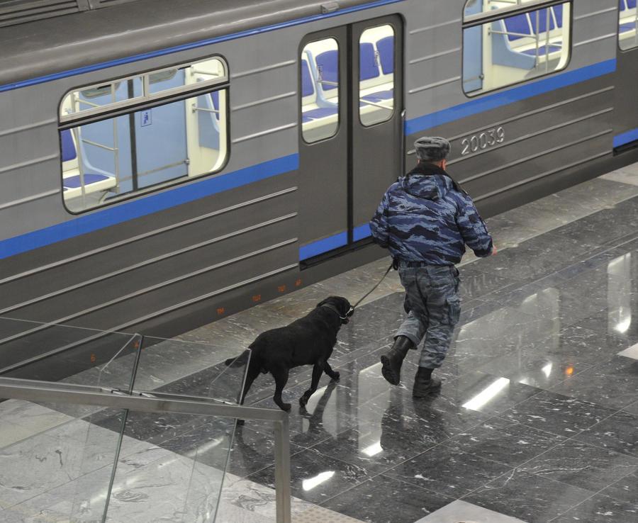 Выходцы с Кавказа и петербуржцы устроили драку на станции метро «Парк Победы»