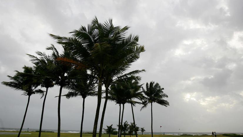 Не нужен нам берег индийский: правительство РФ признало Гоа небезопасным для туристов