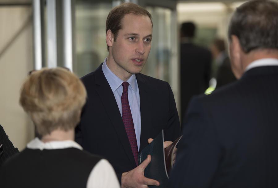 Принц Уильям призвал уничтожить всю слоновую кость в Букингемском дворце