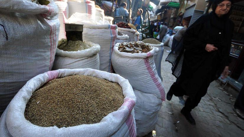 Египет отказался от бесплатной пшеницы из России