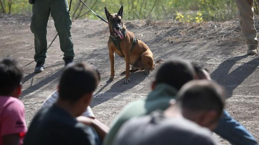 Американские пограничники попали в тюрьму за то, что заставили наркоторговцев съесть свой «товар»