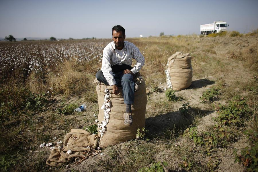 Российские санкции подкосили турецкое сельское хозяйство