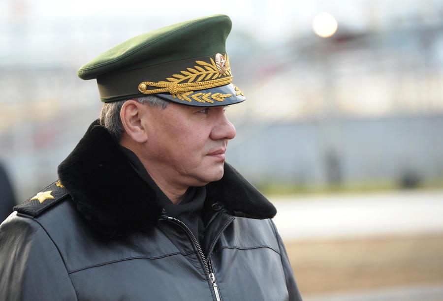 Шойгу: ВМФ РФ в Средиземном море обеспечивает безопасность перевозки сирийского химоружия