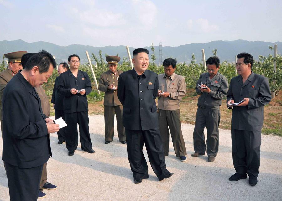 ООН: Северная Корея переделала лесовозы в мобильные ракетные комплексы