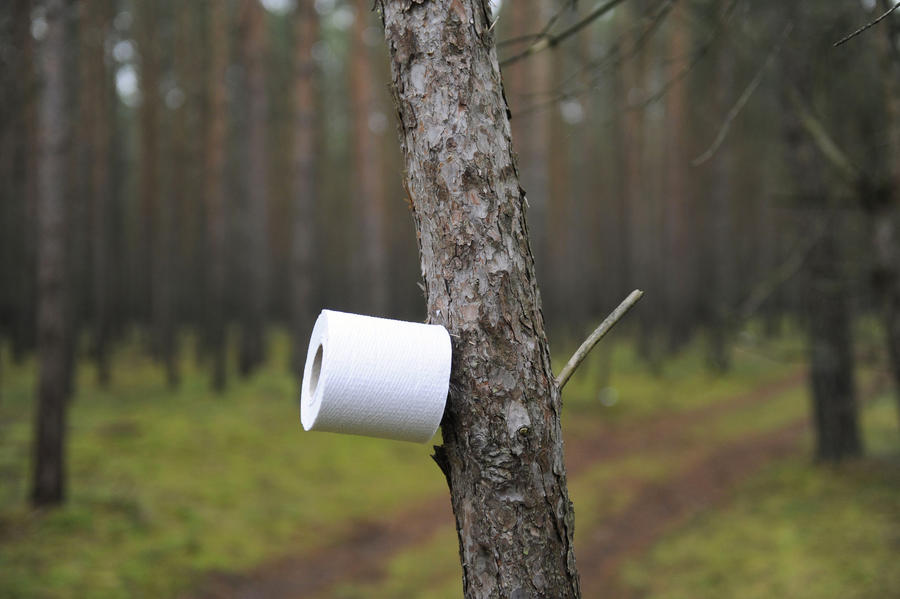 Французского грабителя выдала туалетная бумага