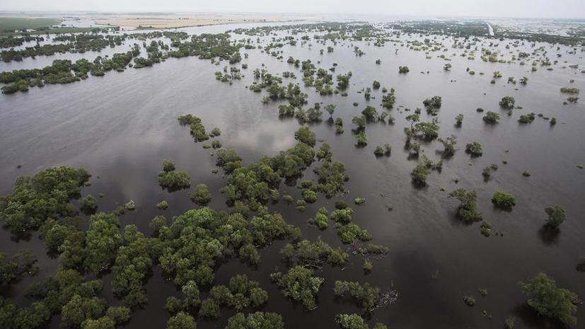 Дальний Восток под толщей воды: затоплены тысячи домов, Путин приказал увеличить штат спасателей