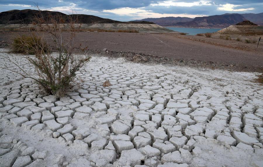 2014 год стал самым жарким за 135 лет