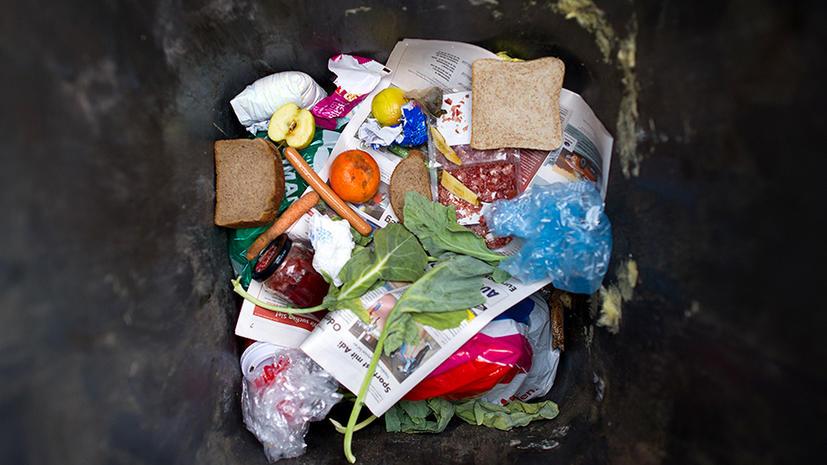 Половина всех производимых в мире пищевых продуктов выбрасывается
