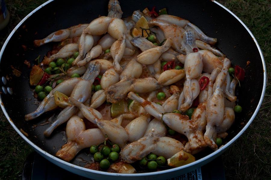 Археологи: блюда из лягушачьих лапок придумали англичане, а не французы