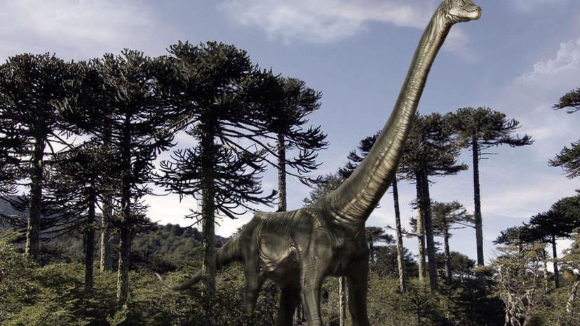 Найден астероид, который убил динозавров